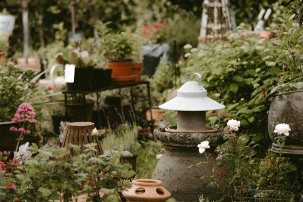 planten en potten tuin